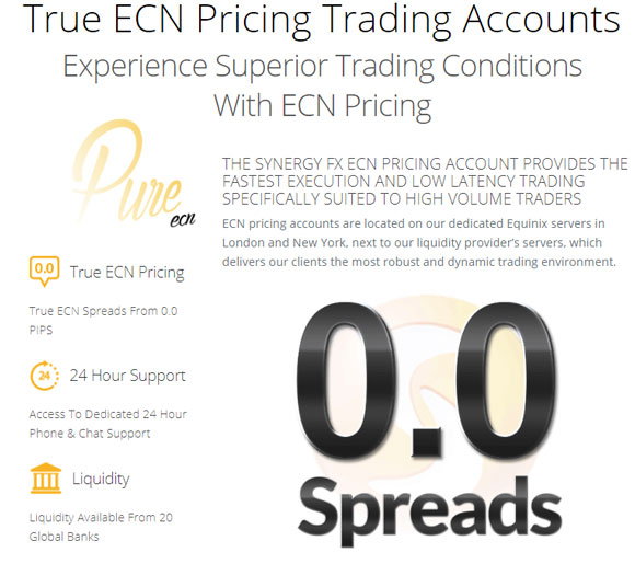 synergy ecn account review